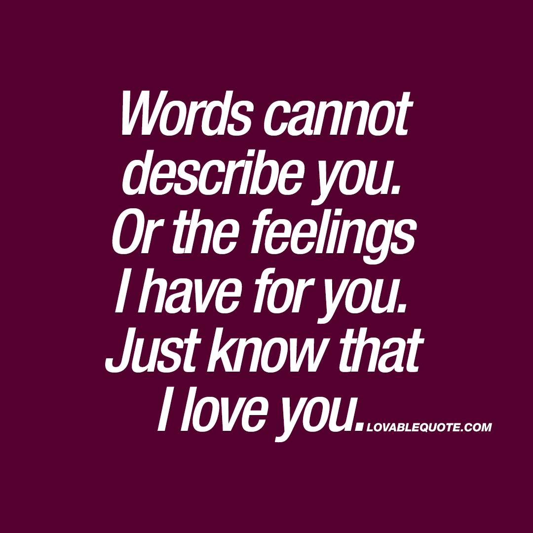 The Love I Have For You Quotes Words Cannot Describe Youor The Feelings I Have For You  Love